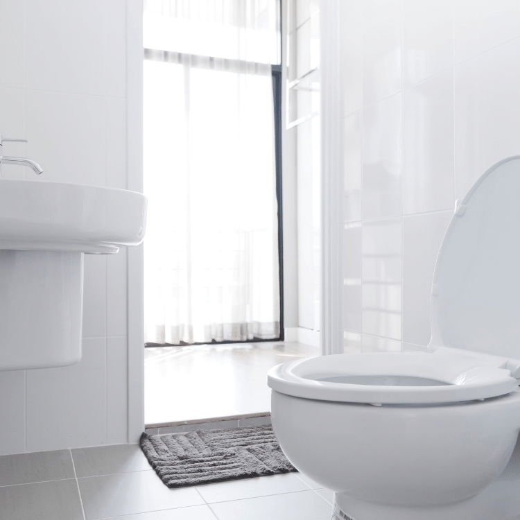 toilet repair and installation_the geiler company
